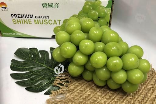 Le Vietnam est le plus grand marche d'importation de raisins sud-coreens hinh anh 1