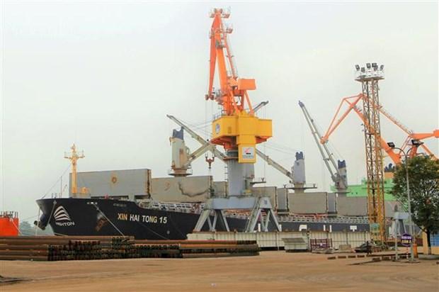 Trois grands navires jettent l'ancre au port de Hai Phong  hinh anh 1
