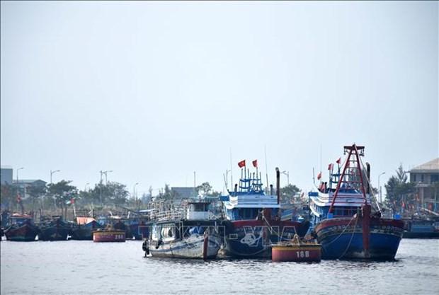 Planifier le systeme des ports de peche et des zones d'abri pour les navires de peche hinh anh 1