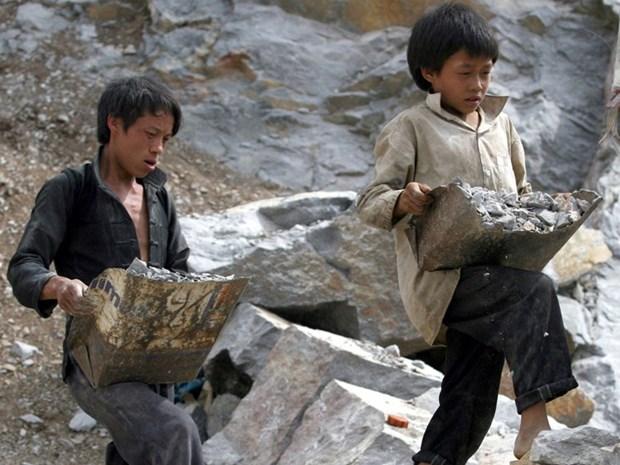 L'OIT salue l'approbation de l'adhesion du Vietnam a la Convention sur l'abolition du travail force hinh anh 1