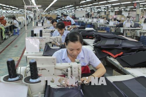 La presse europeenne souligne la ratification de l'EVFTA par le Vietnam hinh anh 1