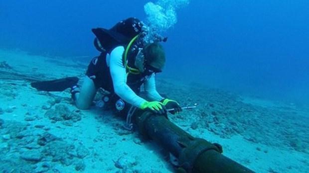 Les operations de reparation du cable sous-marin AAE-1 sont achevees hinh anh 1