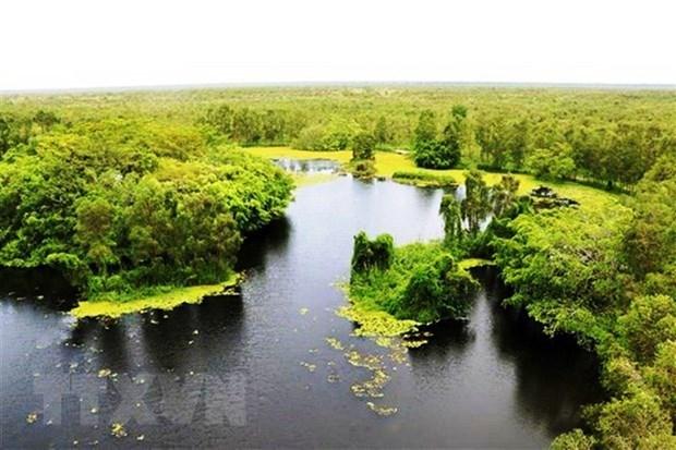 Le gouvernement elabore un plan sur la preservation de la biodiversite pour la periode 2021-2030 hinh anh 2