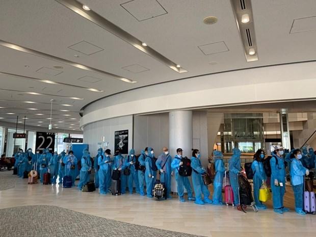 COVID-19 : rapatriement de plus de 340 citoyens vietnamiens au Japon hinh anh 1