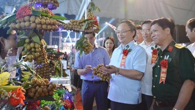 Ouverture de la Fete des longanes de Hung Yen 2020 hinh anh 1