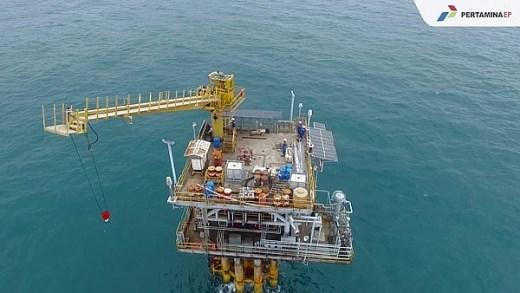 L'Indonesie lance un appel d'offres pour 10 projets petroliers et gaziers hinh anh 1