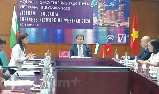 Le Vietnam et la Bulgarie renforcent leurs relations commerciales hinh anh 1