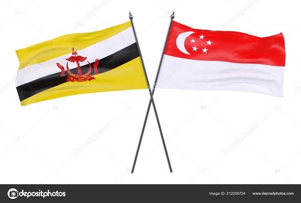 Singapour et le Brunei s'engagent a renforcer leur cooperation en matiere de defense hinh anh 1