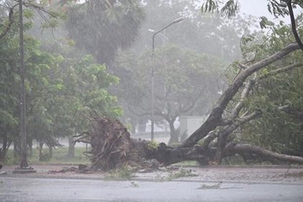 La tempete Noul provoque de lourdes degats dans des provinces du Centre hinh anh 1