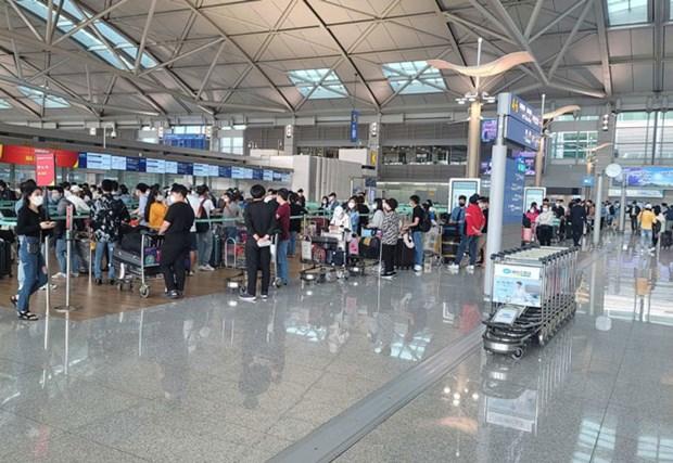COVID-19 : Plus de 250 Vietnamiens rapatries de Republique de Coree hinh anh 1