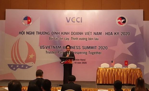 Le Sommet d'affaires Etats-Unis - Vietnam 2020 hinh anh 1