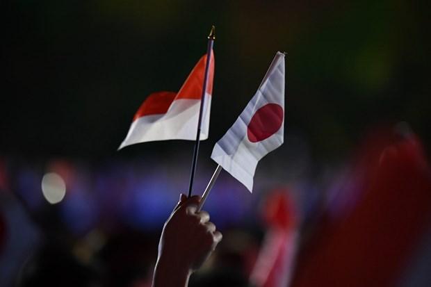 Le Japon et l'Indonesie s'engagent a renforcer leurs relations hinh anh 1