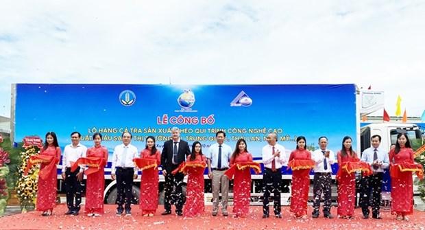 Des pangasius fabriques selon des hautes technologies exportes vers l'etranger hinh anh 1