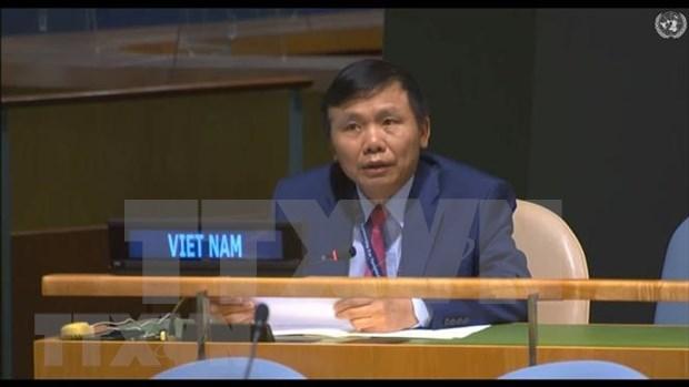 Le Vietnam soutient l'elargissement de la composition du Conseil de securite de l'ONU hinh anh 1