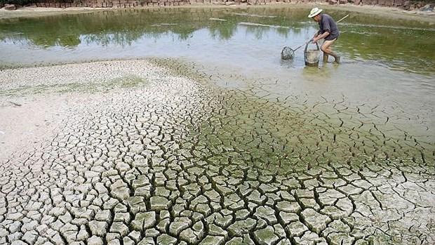 Surmonter les defis du changement climatique au Vietnam hinh anh 1