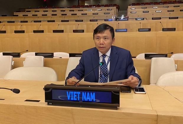 Le Vietnam preside la reunion semestrielle du Groupe de travail sur les Tribunaux internationaux hinh anh 1