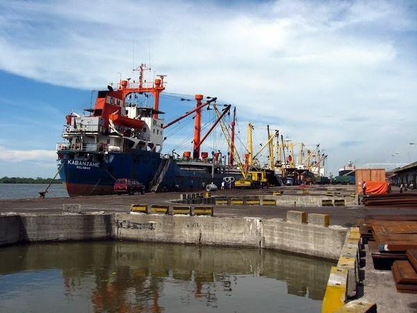 L'ASEAN renforce la coordination dans le domaine du transport maritime hinh anh 1