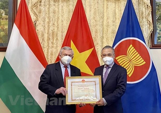 Les responsables de l'Association d'amitie Hongrie-Vietnam a l'honneur hinh anh 1