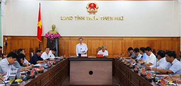 La province de Thua Thien-Hue assure l'avancement de la preparation des elections hinh anh 1