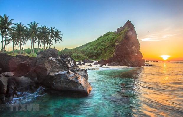 Pour promouvoir le developpement durable de l'ile de Ly Son hinh anh 1