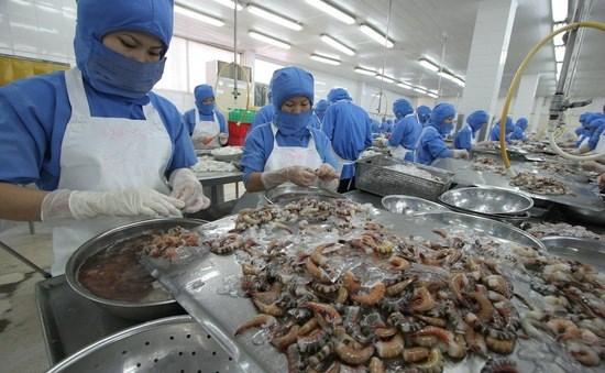 Les exportations de la region Sud toujours aussi animees hinh anh 1