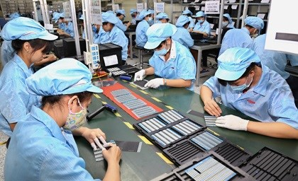 Protection des droits des salaries et des employeurs impactes par l'epidemie de COVID-19 hinh anh 1