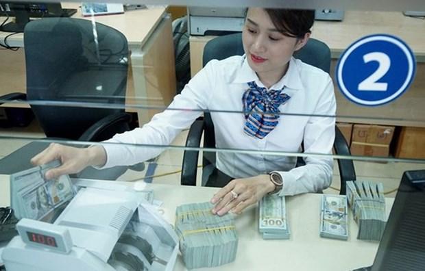 Forte hausse des devises etrangeres transferees a Ho Chi Minh-Ville en 7 mois hinh anh 1