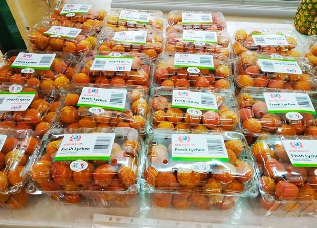 Entreprises vietnamiennes d'outre-mer: passerelles pour