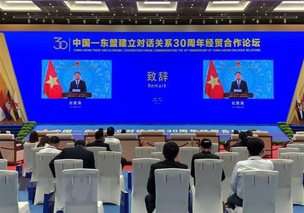 La Foire Chine- ASEAN aide a promouvoir la zone de libre-echange ASEAN-Chine hinh anh 2