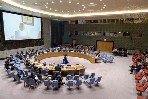 ONU : le Vietnam apprecie l'importance des elections opportunes en Libye hinh anh 1