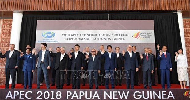 Cloture de l'APEC 2019 en Papouasie-Nouvelle-Guinee hinh anh 1