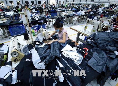 Textile-habillement : renforcement de la cooperation Vietnam-Inde hinh anh 1