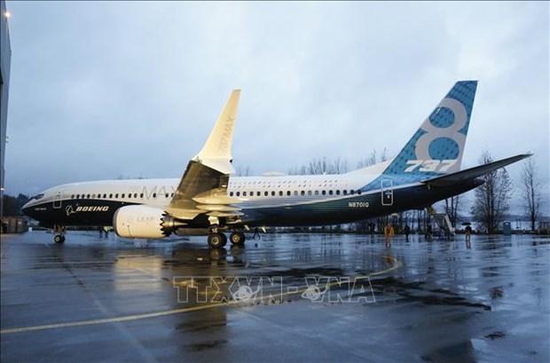 Les Boeing 737 MAX ne sont pas encore exploites au Vietnam hinh anh 1