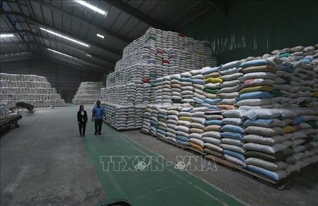 Le secteur agricole progresse de 2,68% au premier trimestre hinh anh 1