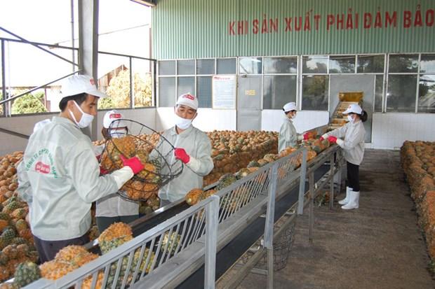 Exportations de produits agricoles en Chine : defis et opportunites hinh anh 1
