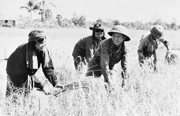 Le Cambodge ou l'histoire d'une renaissance hinh anh 5