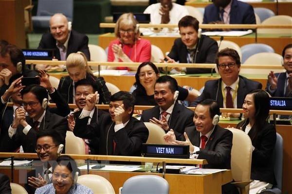 Le Vietnam est pret a contribuer aux efforts internationaux communs pour la paix hinh anh 1