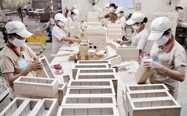 Les exportations de produits sylvicoles en hausse au premier semestre hinh anh 1