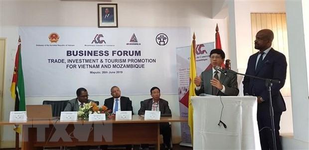 Forum economique Vietnam-Mozambique a Maputo hinh anh 1