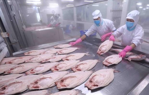 Le libre-echange avec l'UE va apporter une double opportunite economique au Vietnam hinh anh 1