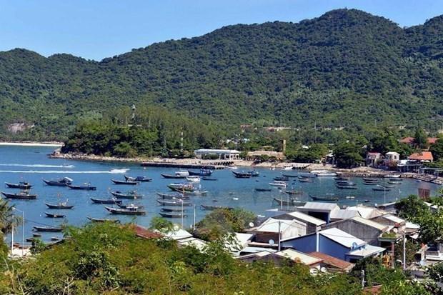 Davantage d'efforts sont necessaires pour preserver l'ile de Cu Lao Cham hinh anh 1