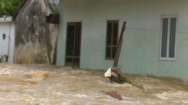 La tempete Wipha cause des degats dans plusieurs localites hinh anh 1