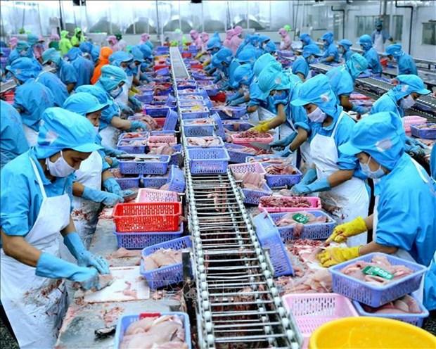 Les exportations pourraient progresser de 7% cette annee hinh anh 1