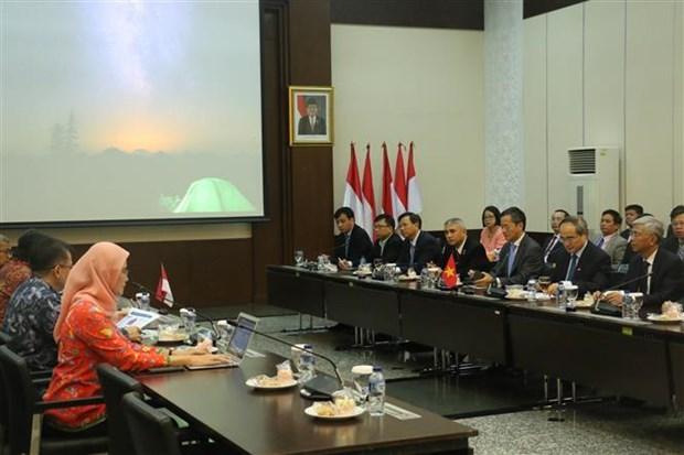 Ho Chi Minh-Ville intensifie sa cooperation avec l'Indonesie hinh anh 1