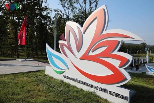 Le Vietnam participe au Forum economique oriental 2019 en Russie hinh anh 1
