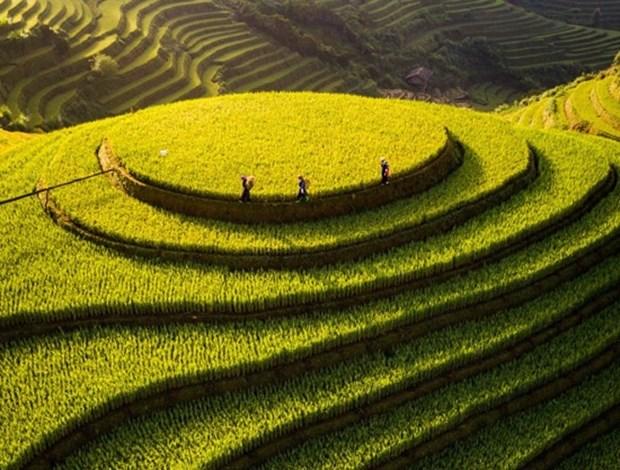 Un Vietnam magnifique vu d'en haut a un concours international de photos hinh anh 4