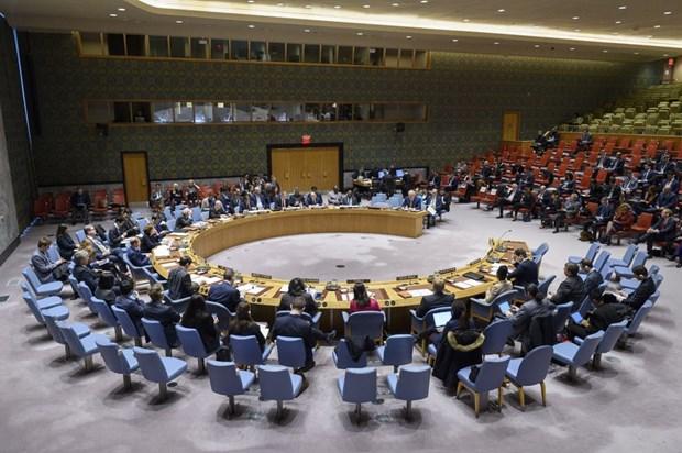 Le Vietnam soutient le renforcement de la cooperation entre l'OSCE et le Conseil de securite hinh anh 1