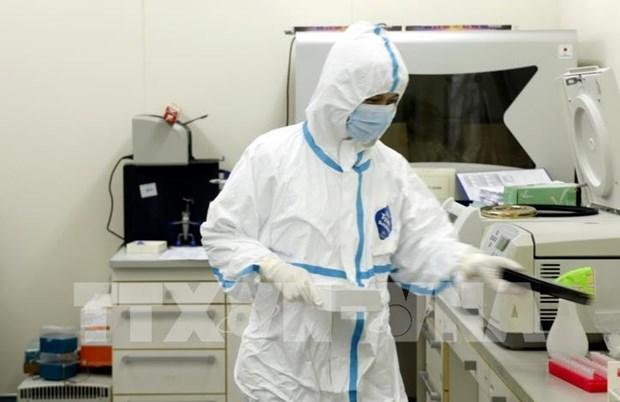 Le Vietnam recoit de l'etranger des commandes de kits de depistage du coronavirus hinh anh 1