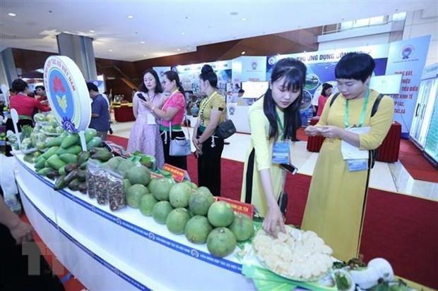 Selection des produits eligibles pour le programme Marques nationales 2020 hinh anh 1