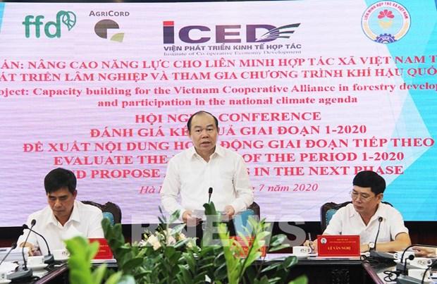 Ameliorer les capacites des cooperatives dans le developpement sylvicole hinh anh 1